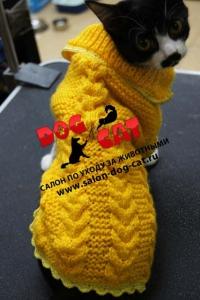 Жёлтый свитер с косичками