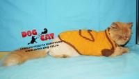 Жёлтый свитер с кармашком